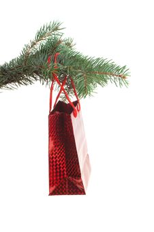 Free Red Bag On A Fir-tree Branch, Isolated Stock Photos - 6587153