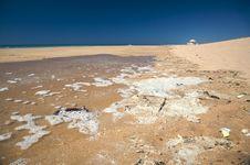 Free Contamination Beach Royalty Free Stock Photography - 6588197