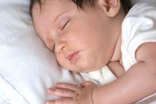 Sleeping Beauty Stock Photography