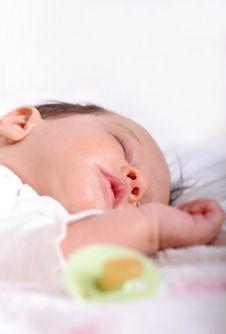 Sleeping Beauty Stock Image