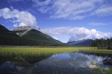 Flooded Meadow In Canadian Rockies Royalty Free Stock Photos