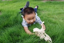 Free The Boy Play On Meadow Royalty Free Stock Photos - 6588898