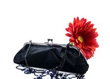 Free Female Accessories Royalty Free Stock Images - 6589909