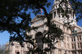 Free Capitol Through The Trees Royalty Free Stock Image - 6592326