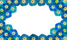 Free Flower Stock Photos - 6590333