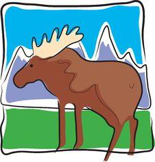 Moose Land Royalty Free Stock Photo