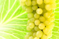 Free Grape Cluster Royalty Free Stock Photography - 6591797