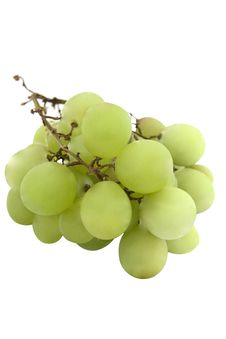 Free Bunch Of White Grapes Stock Photo - 6593370