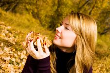 Pretty Girl With Yellow Leaves In The Park Royalty Free Stock Image