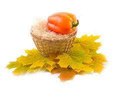 Basket On White Background Stock Photo