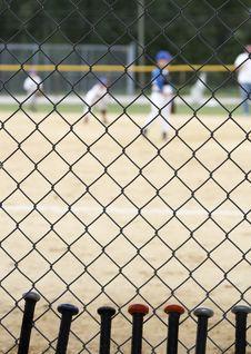 Baseball Season Stock Photos