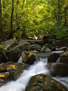 Free Mountain Stream Royalty Free Stock Photo - 6597025