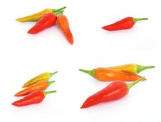 Free Red Hot Chilli Royalty Free Stock Images - 6597109