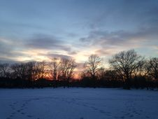 Sunset In A Park In Snow In Winter. Royalty Free Stock Photography