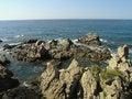 Free Sea Rocks Royalty Free Stock Images - 666849