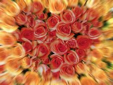 Free Blurry Rose Heart Stock Images - 660534
