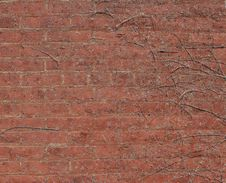 Free Brick Wall Background Royalty Free Stock Photography - 664117