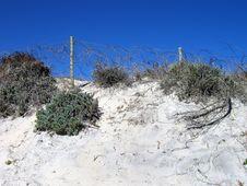 Free Coastal Scene One Royalty Free Stock Image - 664786