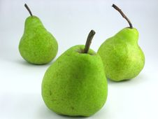 Free Three Pears Stock Images - 668894