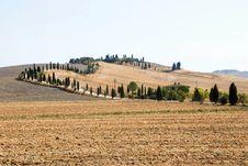 Free Tuscany Royalty Free Stock Photography - 6600067