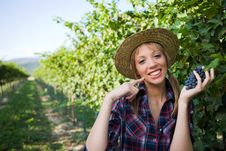 Young Peasant Woman With Grape Sign Good Royalty Free Stock Image