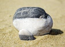 Free Stone On A Beach Stock Images - 6601984