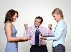 Free Successful Business Colleagues Stock Photo - 6602730