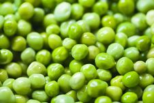 Free Green Peas Royalty Free Stock Photos - 6603378