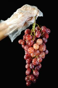 Free Grapes 5 Royalty Free Stock Image - 6606946