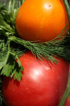Free Two Tomatoes Royalty Free Stock Photography - 6608707