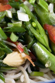 Free Rice Noodle Relish Macro Stock Photo - 6609200