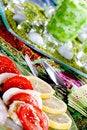 Free Tomato & Mozzarella Dish Stock Photography - 6610062