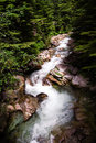 Free Waterflow Down River In Snoqualmie Stock Photo - 6618630