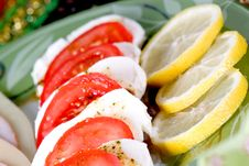 Free Tomato & Mozzarella Dish Royalty Free Stock Photography - 6610027