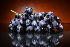 Free Grapes Stock Photography - 6610552