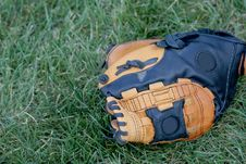 Free Baseball Glove In Grass Stock Image - 6610601