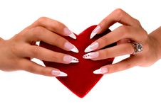 Free Fingernail Cosmetic Stock Photos - 6610803