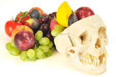 Free Human Skull Cornucopia Royalty Free Stock Photos - 6613928