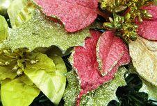 Free Christmas Ornament 1 Stock Image - 6616551