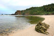 Free Tropical Beach Royalty Free Stock Photos - 6616878
