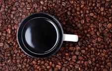 Free Cup Of Coffee And Seeds Royalty Free Stock Photo - 6618775