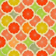 Free Orange Paradise_2 Royalty Free Stock Photos - 6619038
