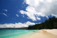 Free Tropical Beach Stock Image - 6619041