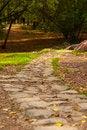 Free Stone Path In Autumn Park Royalty Free Stock Photos - 66136028