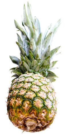 Free Pineapple Stock Photography - 6620232