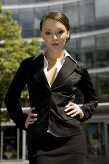 Free Young Businesswoman Royalty Free Stock Image - 6622026