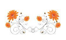 Free Decorative Flowers Royalty Free Stock Photos - 6623038