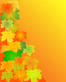 Free Autumn Leaves Background Stock Photos - 6623243