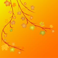 Free Autumn Leaves Background Royalty Free Stock Images - 6623279