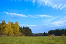 Free Meadow In Solar Autumn Day Royalty Free Stock Photos - 6623558